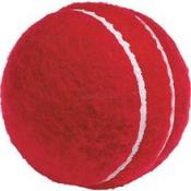 C28 callas mini cricket.jpg